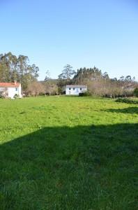 ref. 2223004 Birizo, Piñeiro. Cedeira (4)