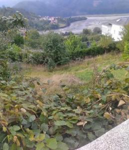 Vista 02